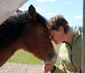 Hevonen haluaa pitää huolta